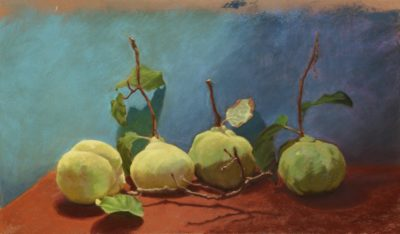 Quince Quartet - Pastel Painting by Shelley McCarl - 11x19